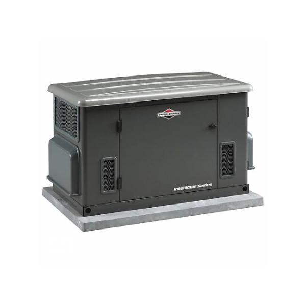 Generadores BRIGGS & STRATTON 1